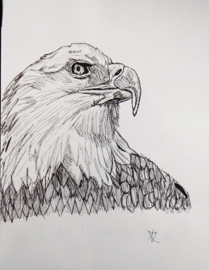 Eagle doodle, felt tip pen.